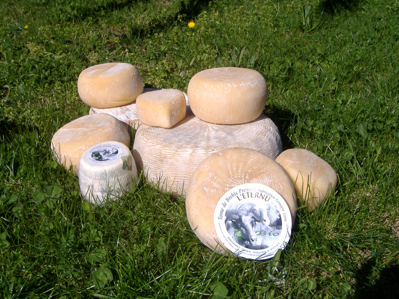 Fromages bio, Camping la Riviere, Corse du Sud